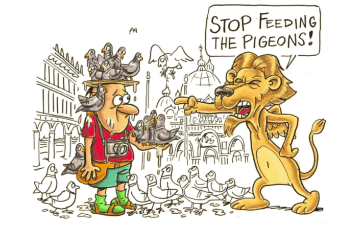 do not feed the pidgeons