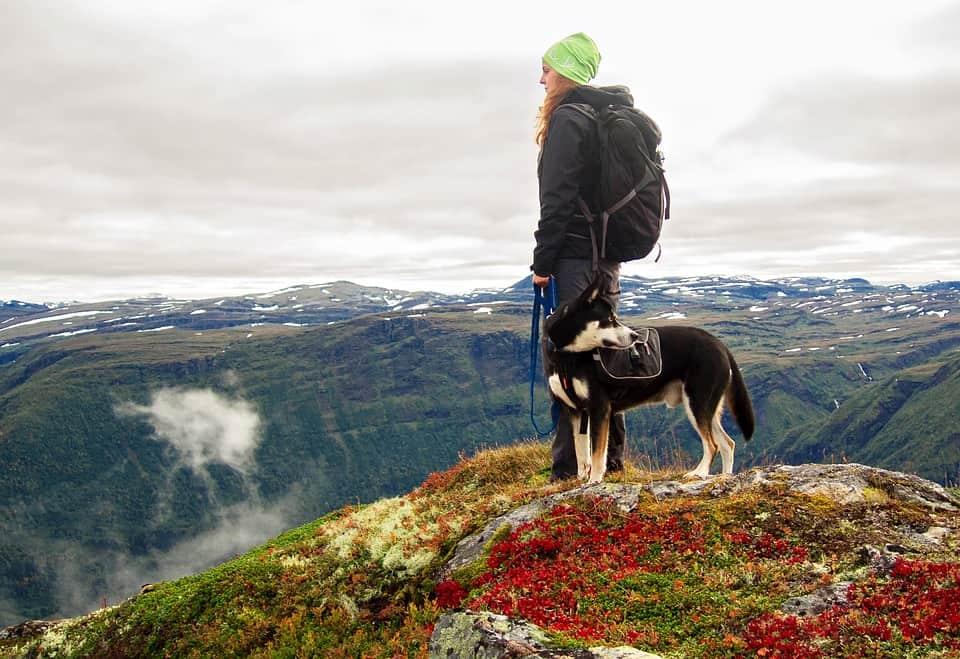 Vacances avec chien: une belle randonnée