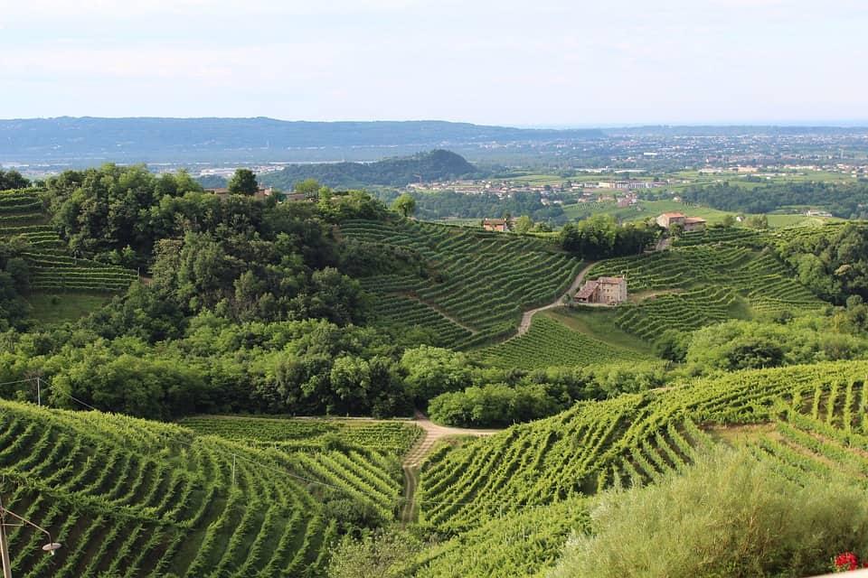 Visiter Trevise: la région de la Marca Trevigiana