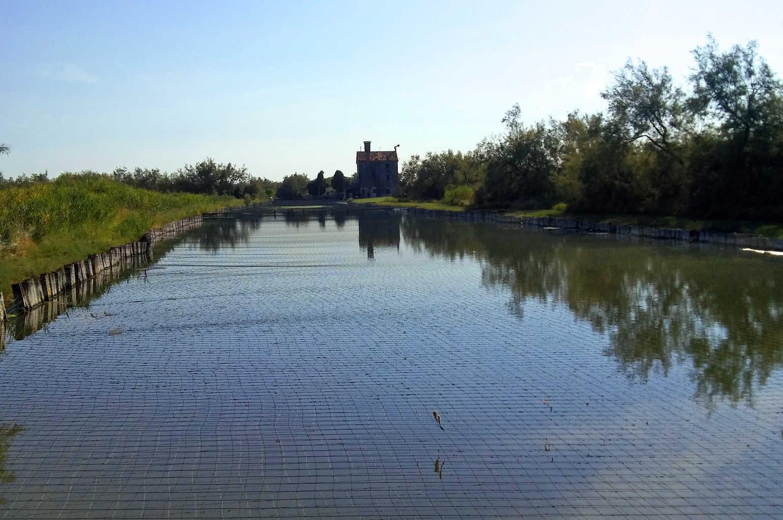 Laguna di Venezia - Laghetto ricoperto dalla rete per proteggere i pesci da cormorani
