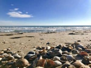 Venedig Strand: an der Adria Küste baden und viel spaß haben